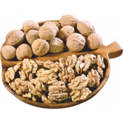 Грецкий орех ПРЕМИУМ в скорлупе (Чилийский) урожай 2021